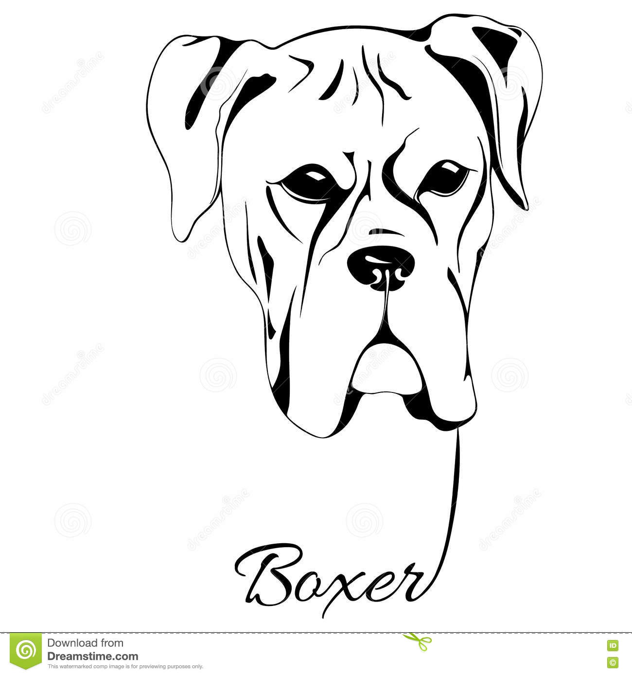 Line Drawing Of A Boxer Dog : Boxer dog head stock vector image