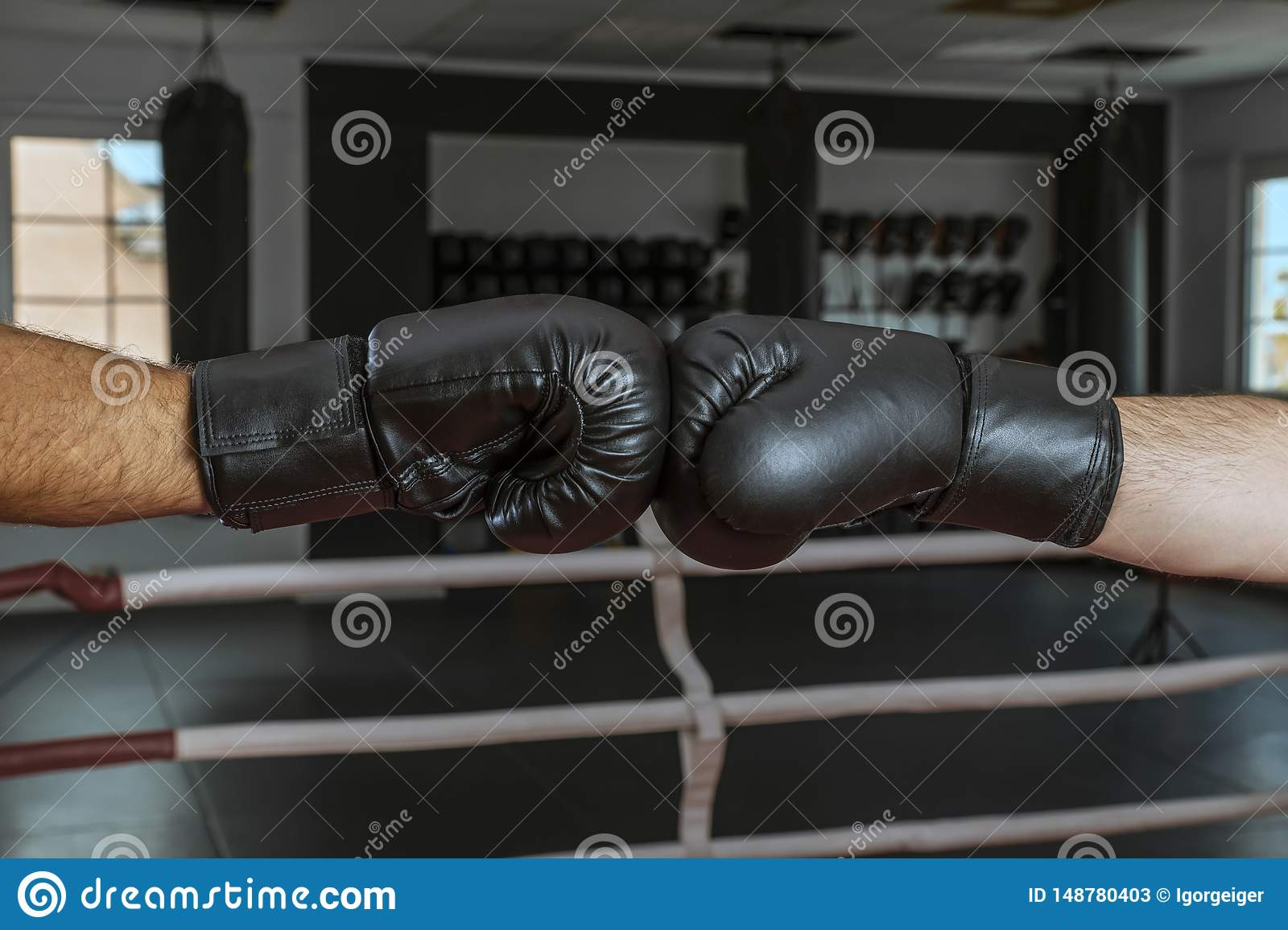 Boxing Gloves In A Friendly Contact Close-up On The Hands ...