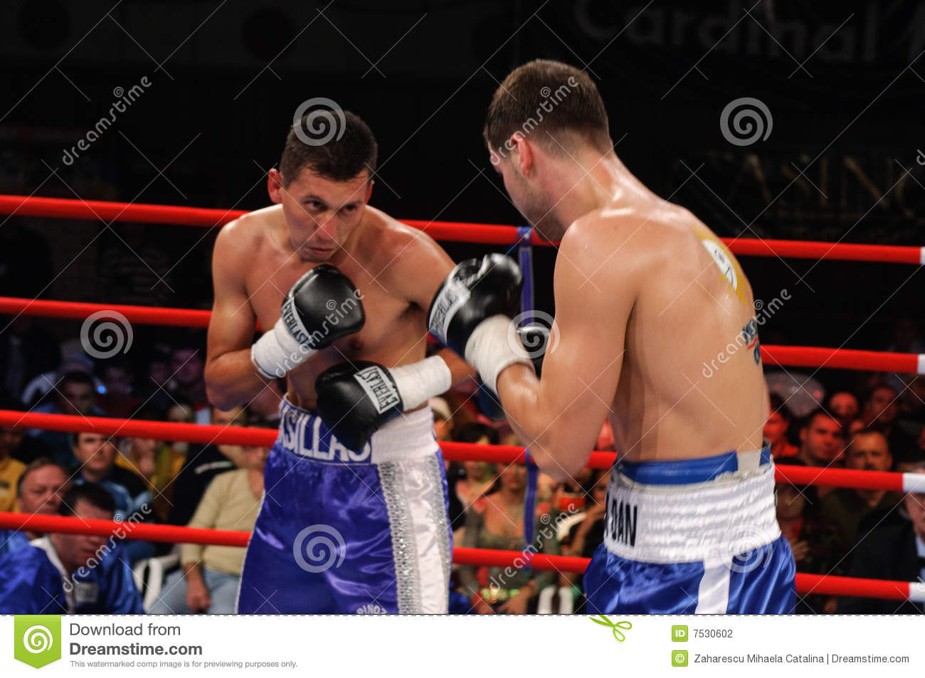 boxing match for wbc intercontinental title editorial