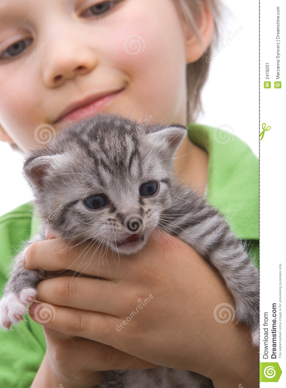 boy with cat stock image image of striped child baby 2418201