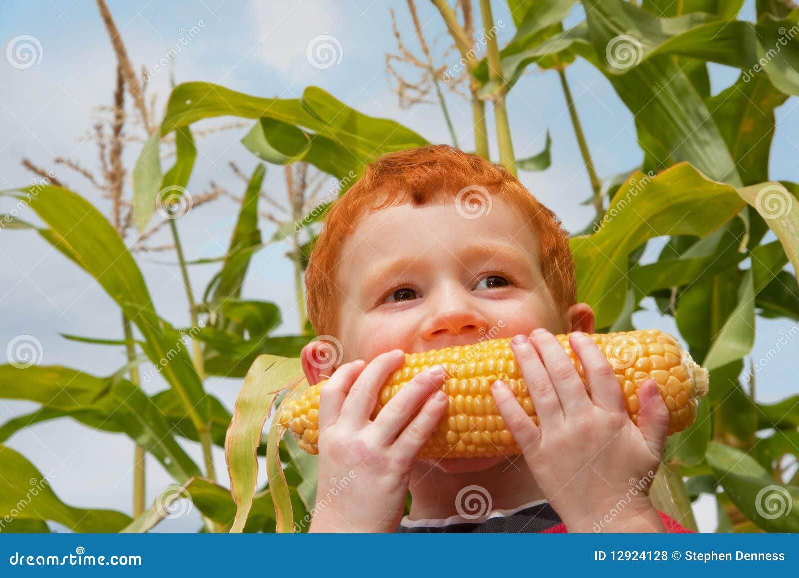 Boy child eating organic corn in garden