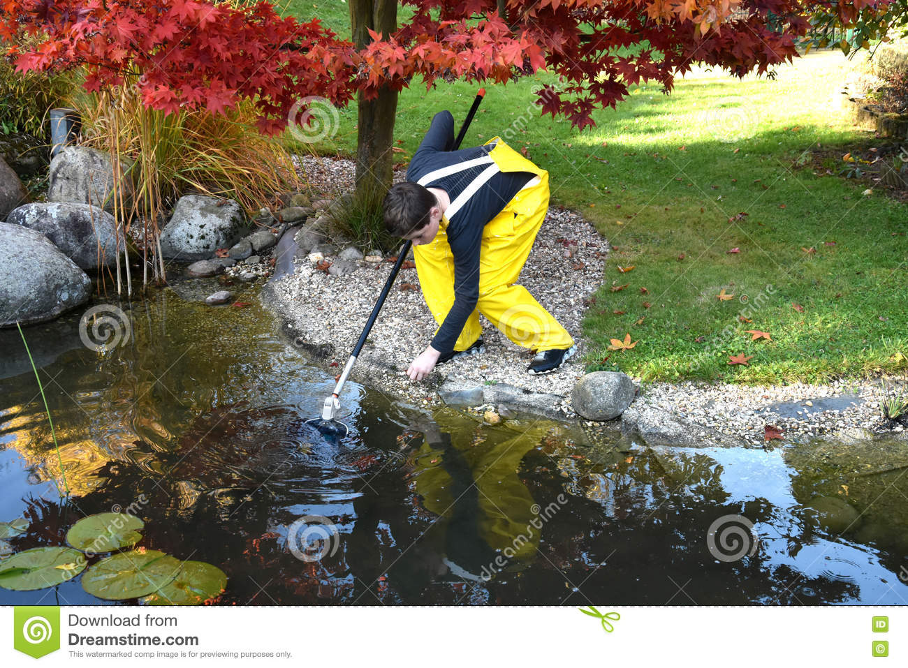 Boy cleaning garden pond stock photo image 79834914 for Garden pond cleaning