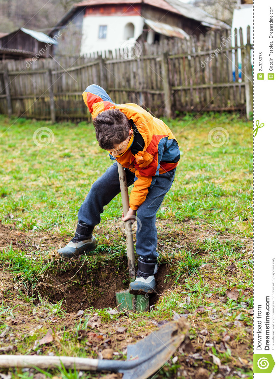 Boy digging in field royalty free stock photo for Digging ground dream meaning