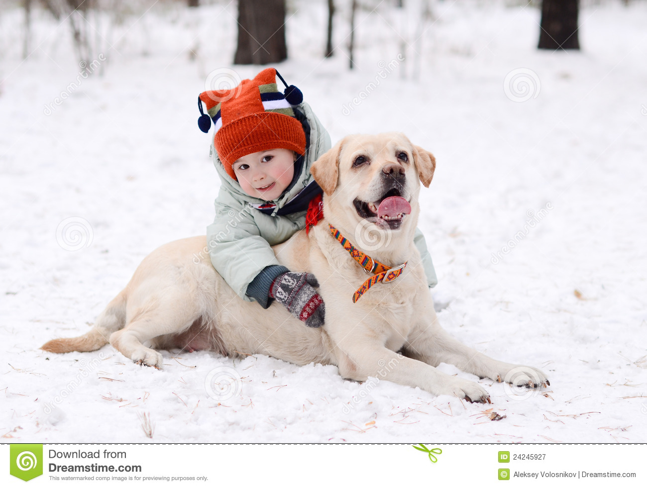 A boy with the dog