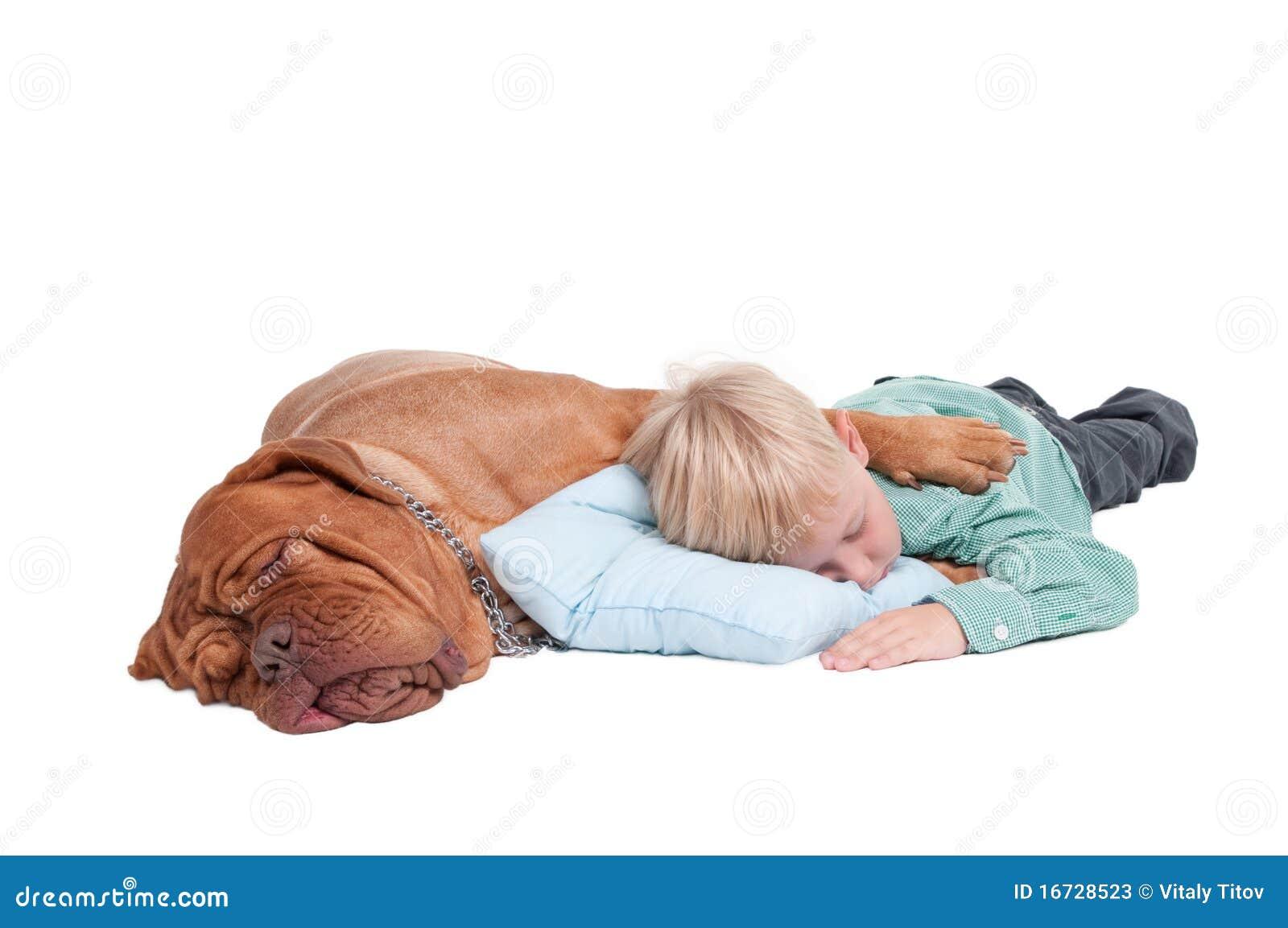 Boy And Dog Asleep On The Floor Stock Photos Image 16728523