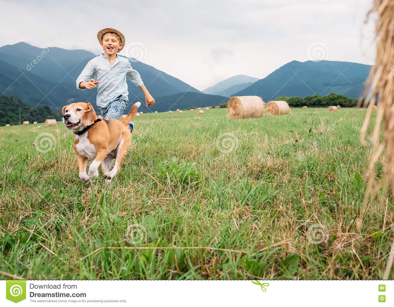 boy-dog-run-together-field-haystacks-746