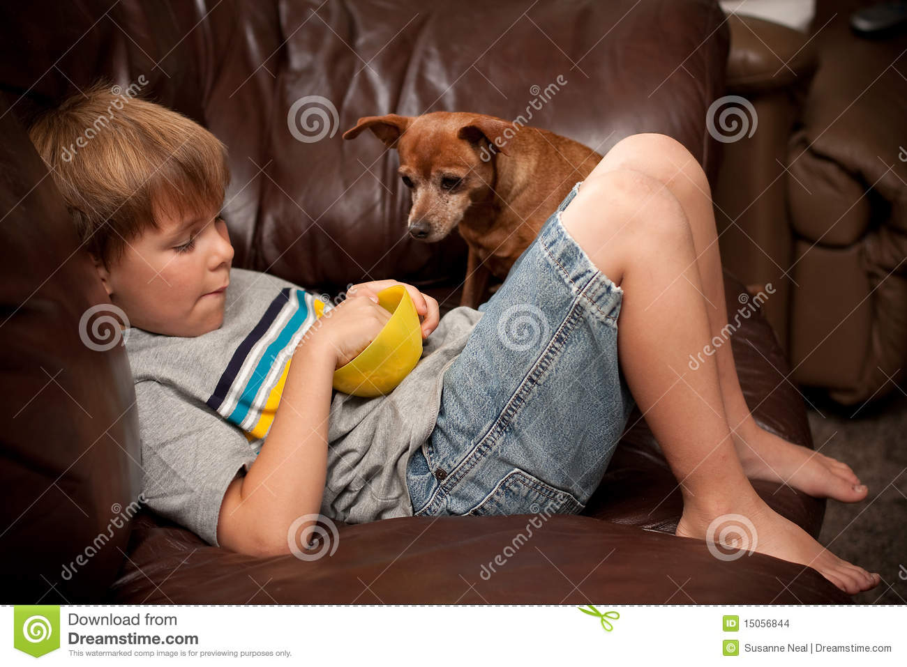 Boy Eating Cereal With Little Dog Watching Stock Photo