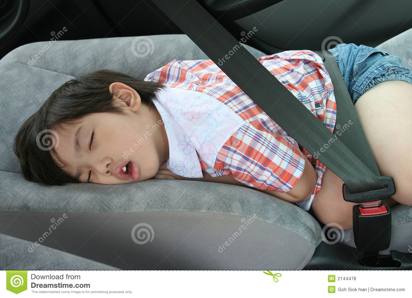 Boy Fasten Seat Belt Sleeping Royalty Free Stock Photos