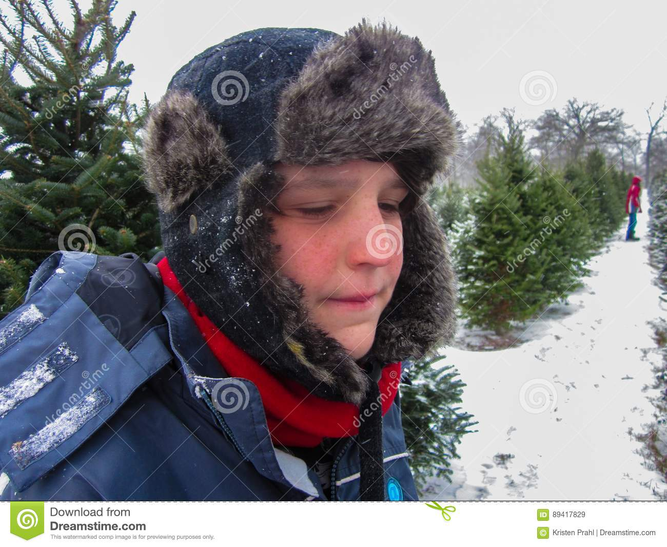 Young Boy At Christmas Tree Farm In Winter Stock Image Image Of Looking Child 89417829