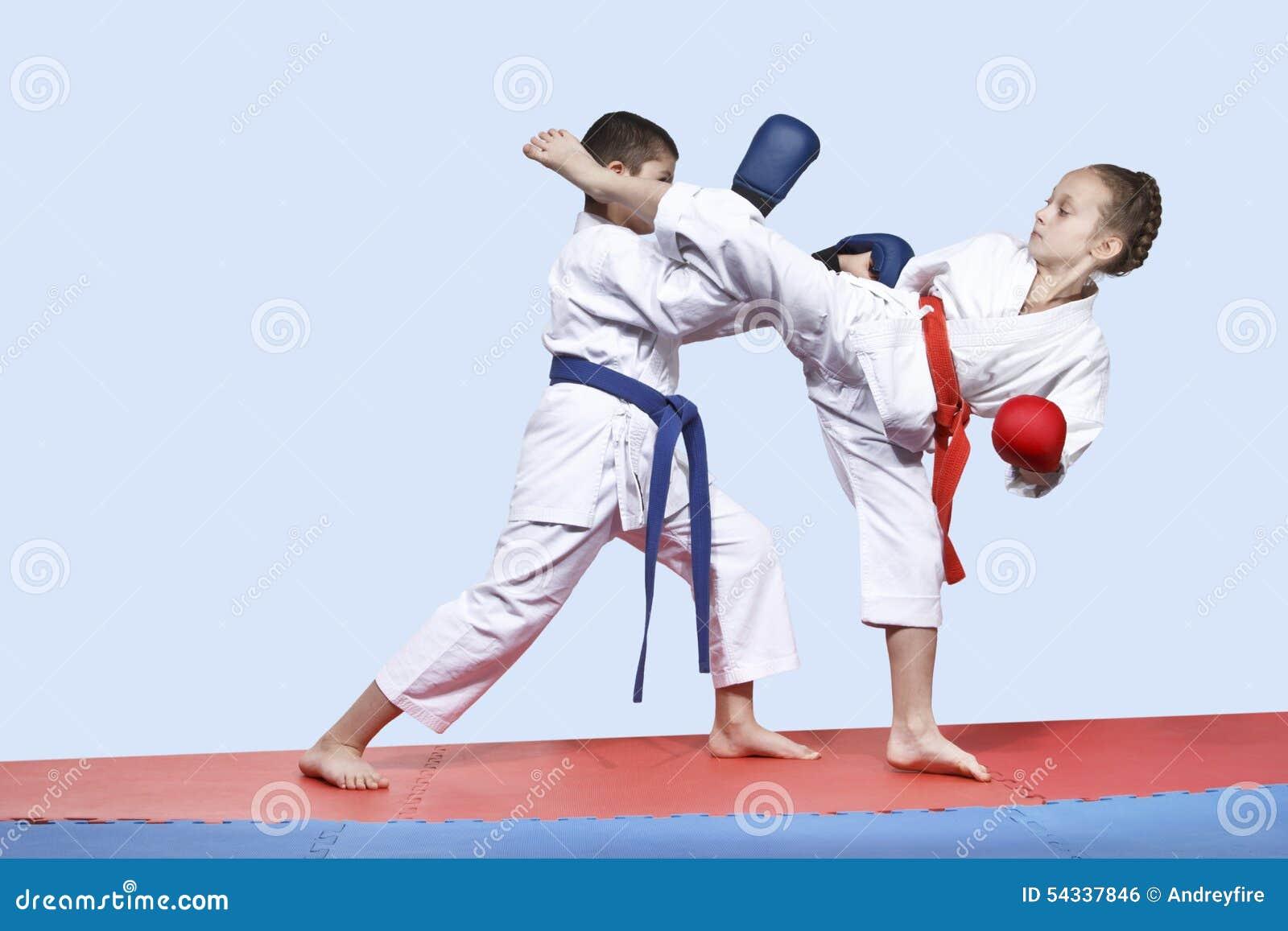 martial arts training exercises pdf