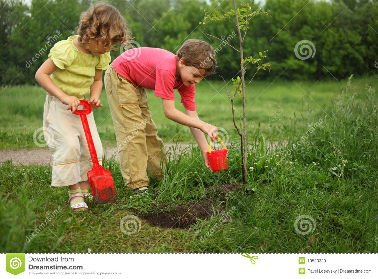 Boy and girl plant tree