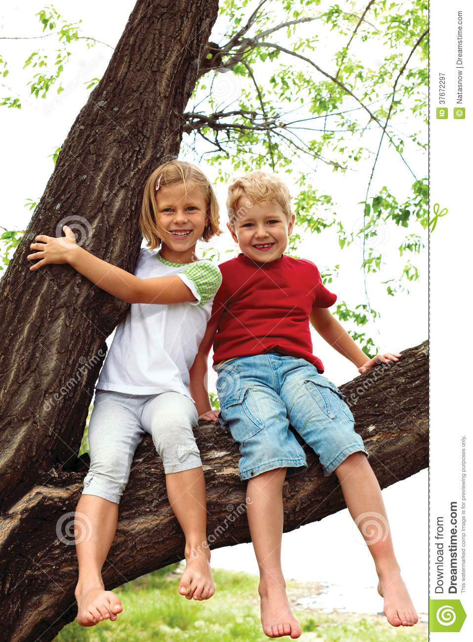 Boy And Girl Bedroom Decor: Boy And Girl Sitting On A Tree Stock Image
