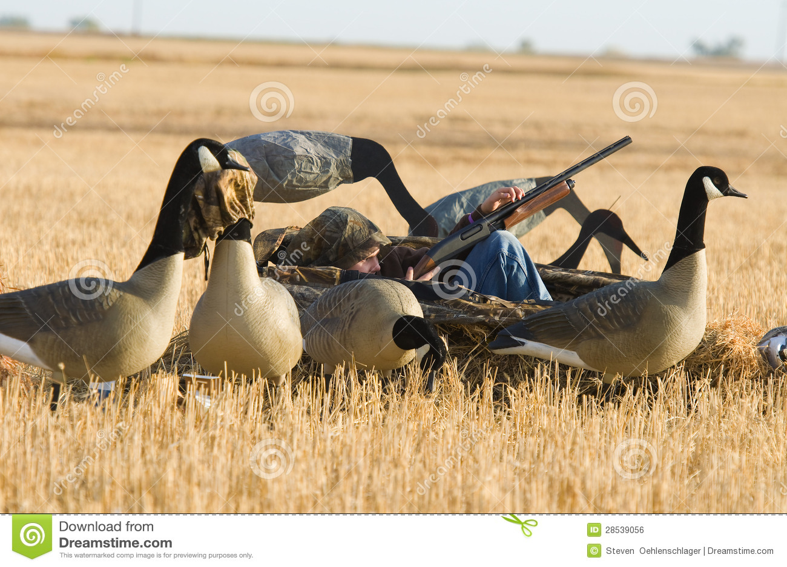 Boy Goose Hunting
