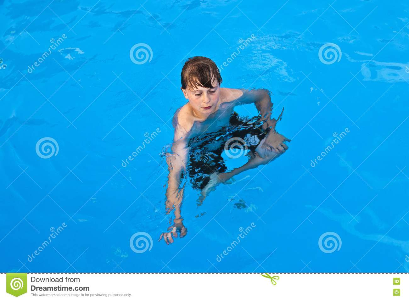 3d swimming pool design software. 3d Design Free Pool Download Software Swimming Has Fun Royalty Image Photos In