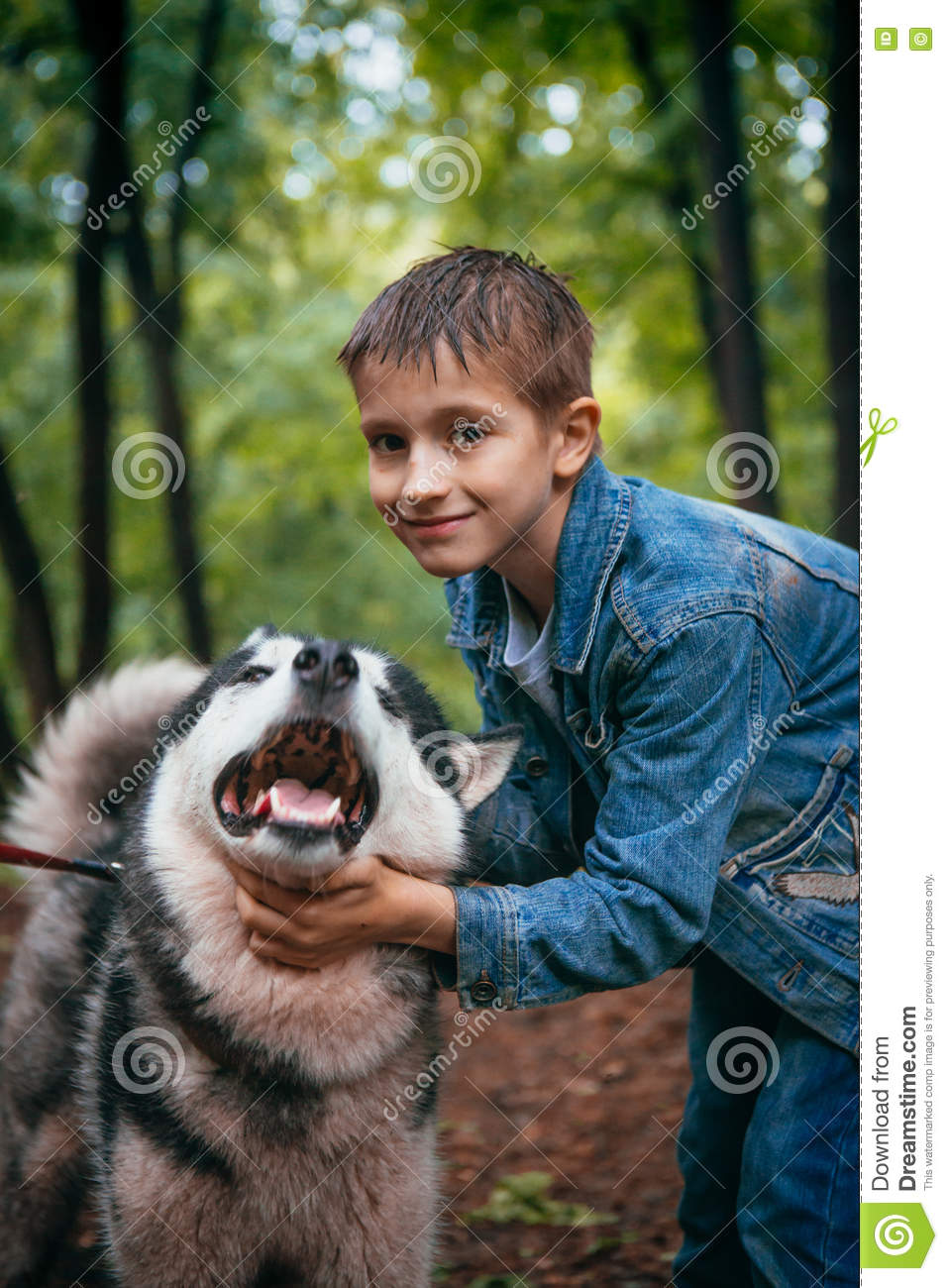 Boy and his dog husky on the background of leaves in spring