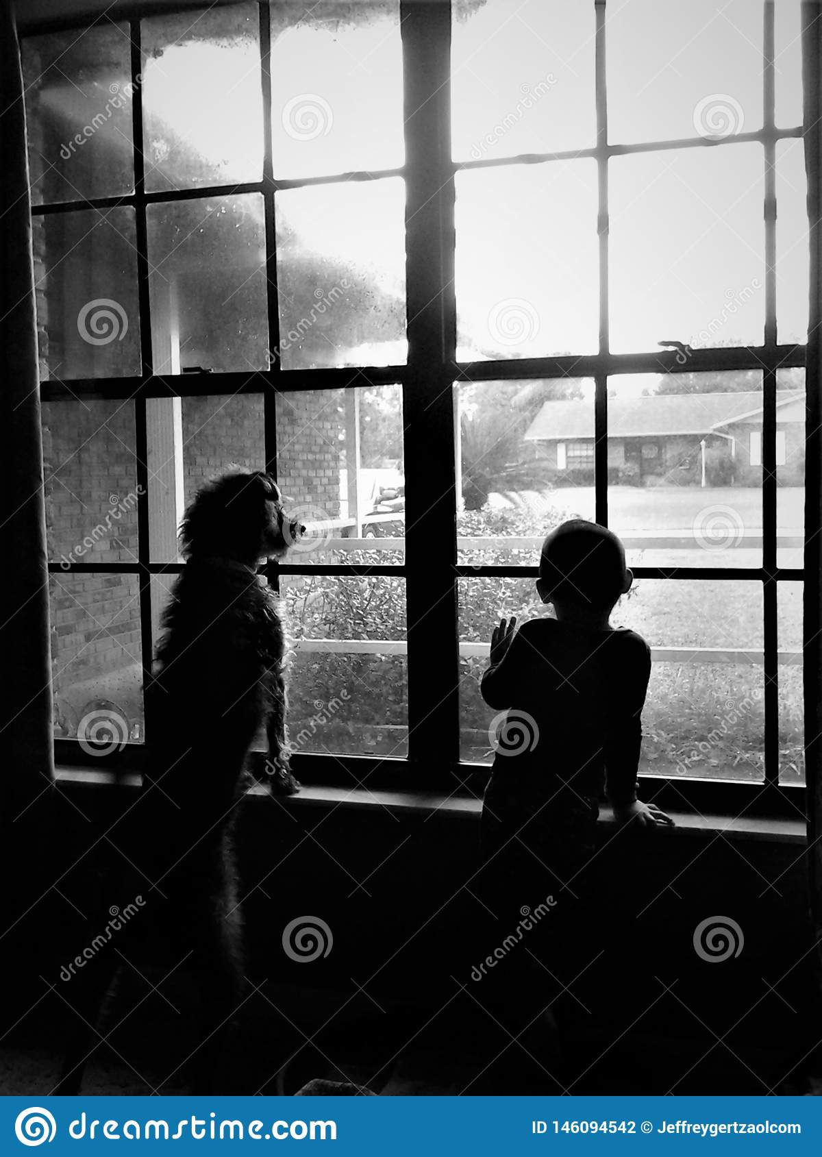 A Boy And His Dog Look Out The Window Stock Illustration Illustration Of Window Look 146094542
