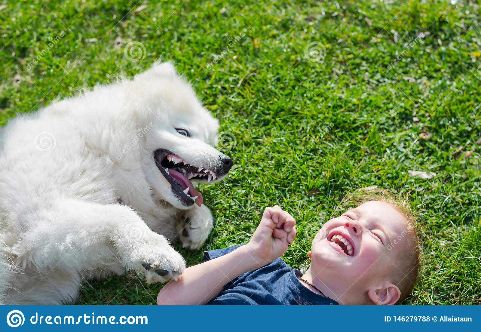 The boy laughs lying with a white dog in the park on the grass in spring