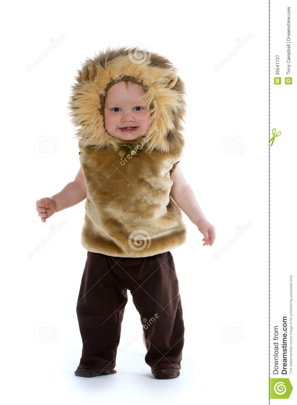 ad143a0e1 18-month-old baby boy in a lion costume for Halloween on white background