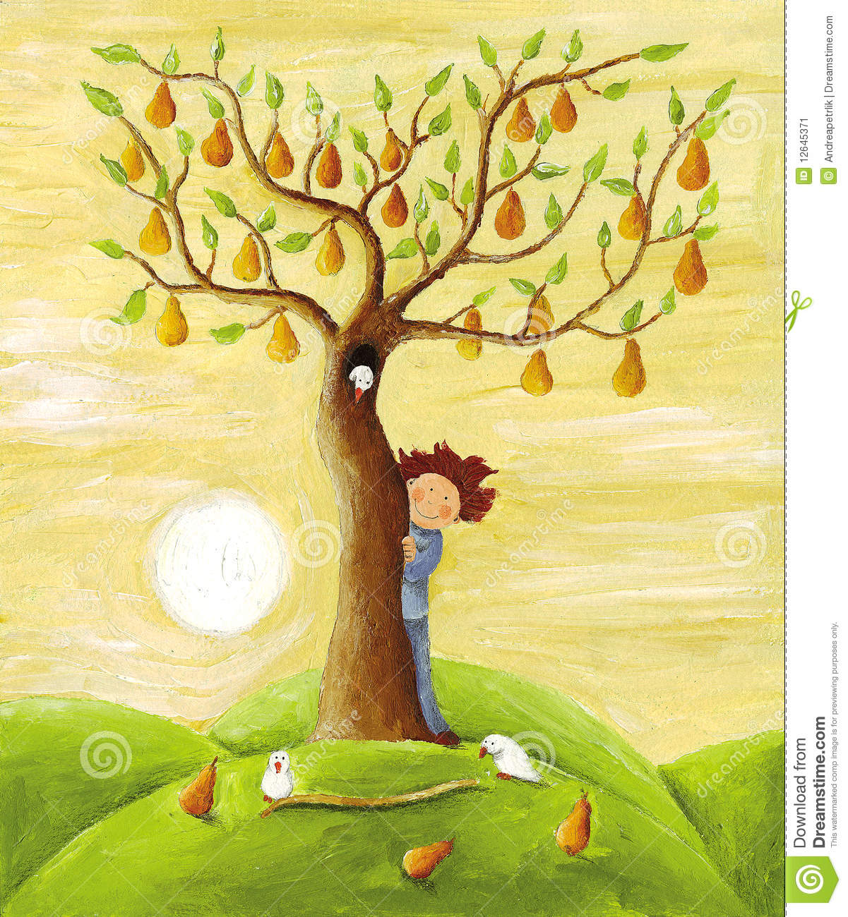 Boy and pear tree