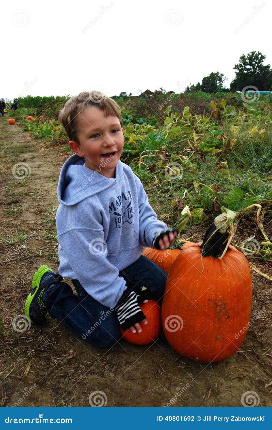 Boy in pumpkin field
