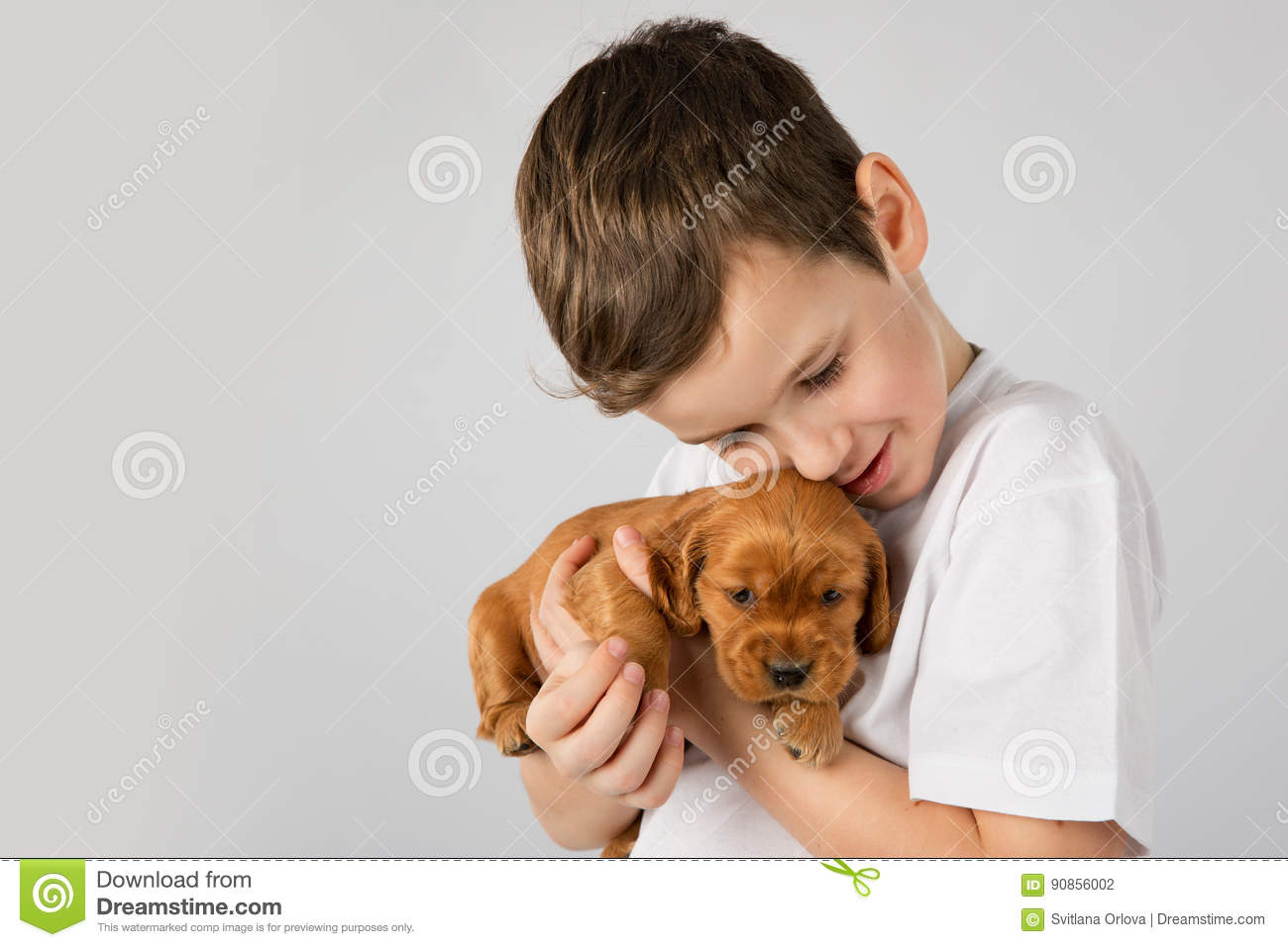 Boy With Red Puppy Isolated On White Background  Kid Pet