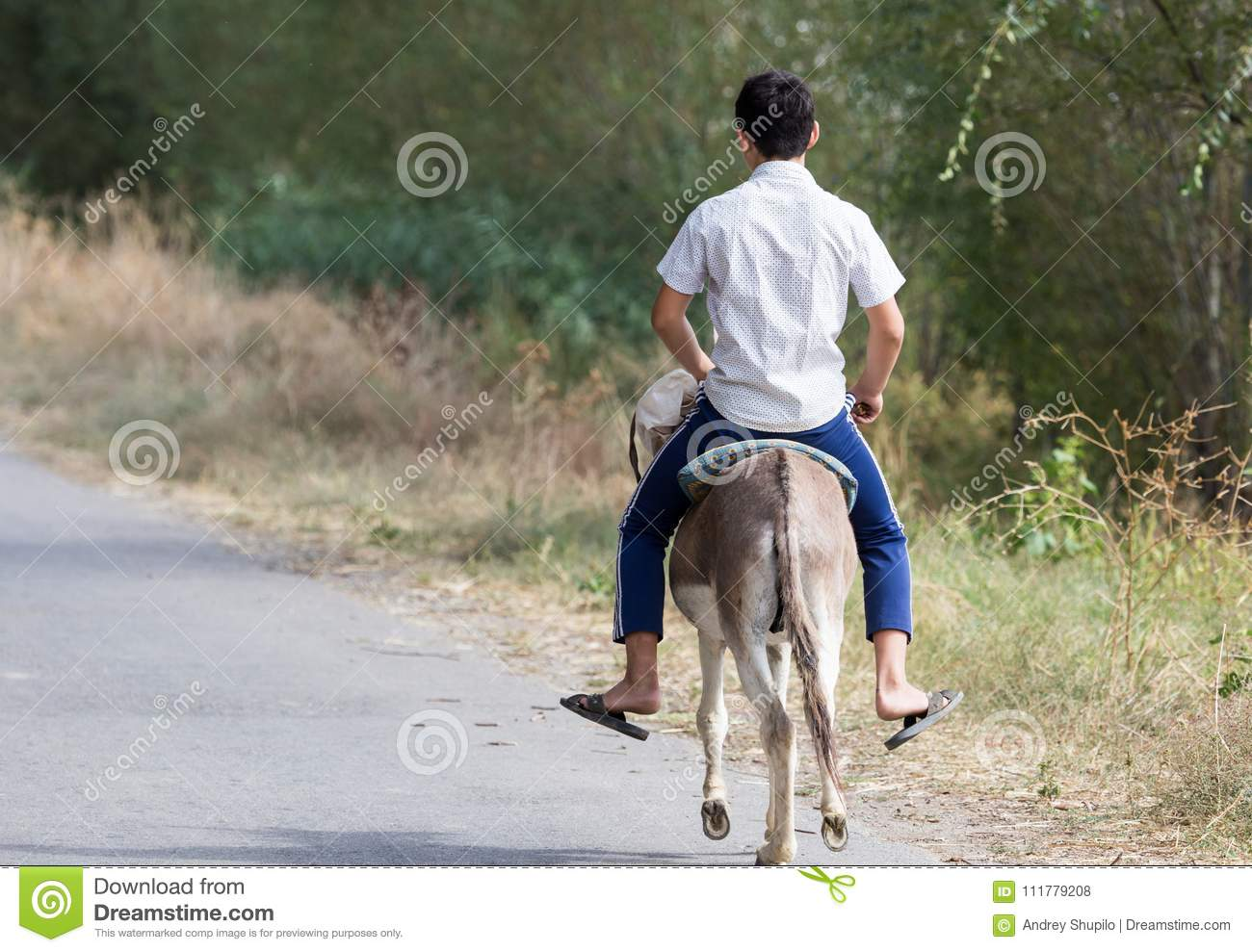 Boy rides on a donkey on the road