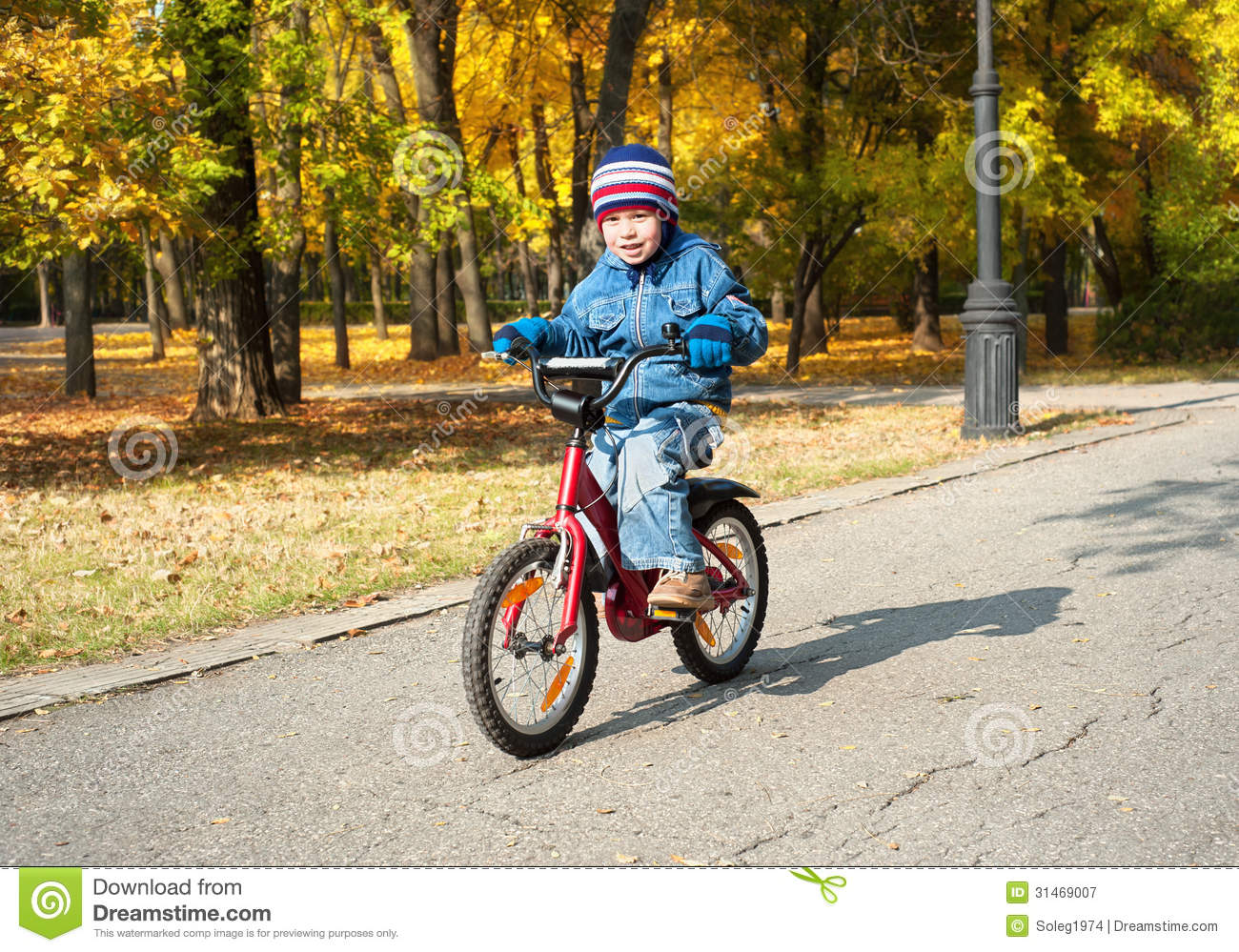 Boy Riding On Bicycle In Park Royalty Free Stock