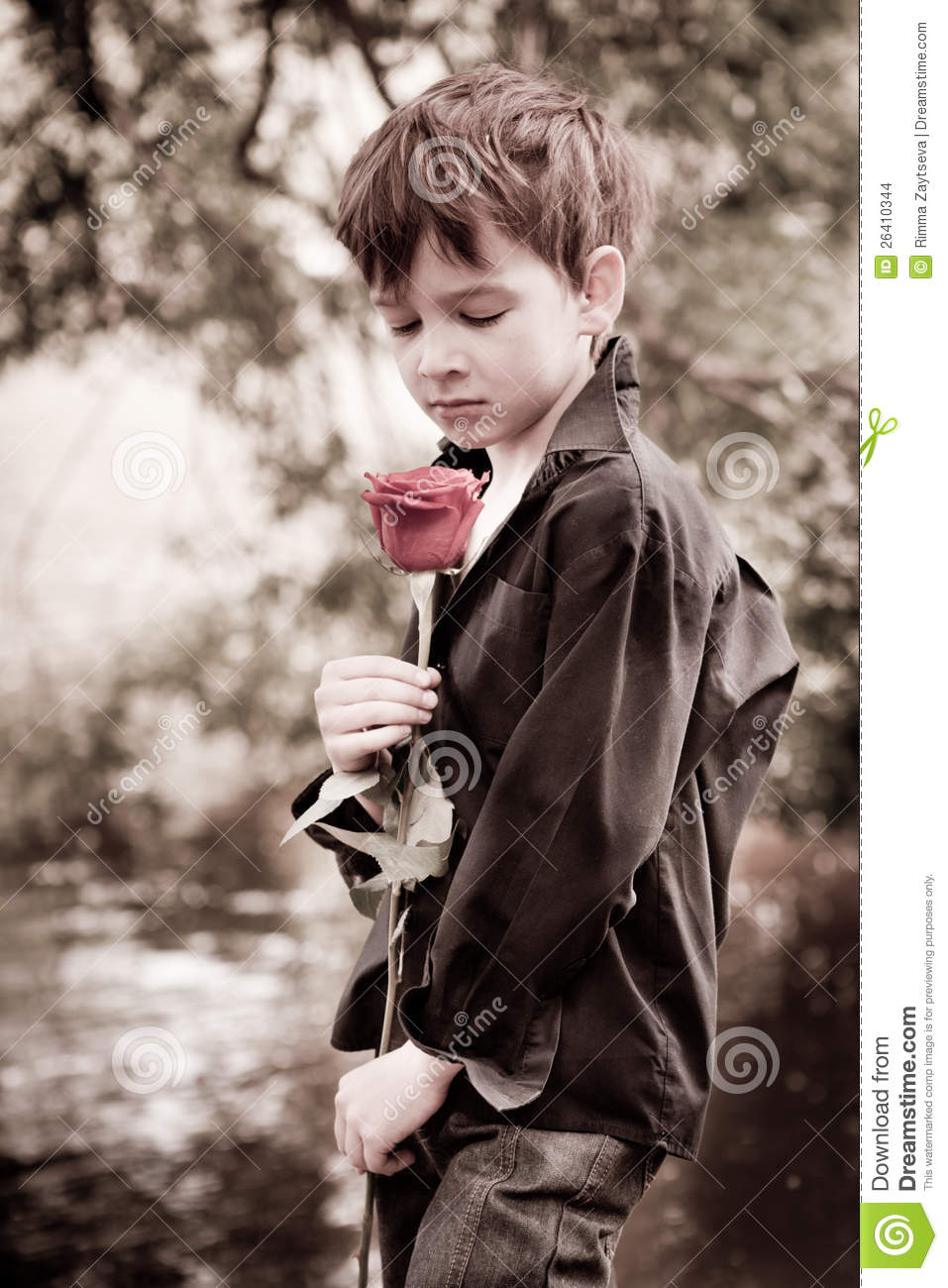 Images Of Boys Painted Bedrooms: Boy With Rose In His Hand Stock Images