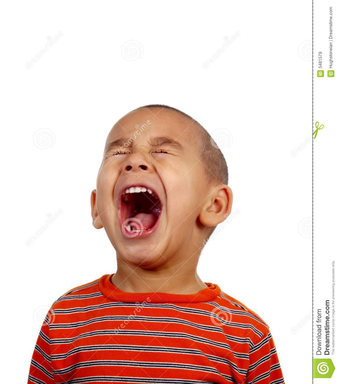Boy Screaming Royalty Free Stock Images Image 5481579