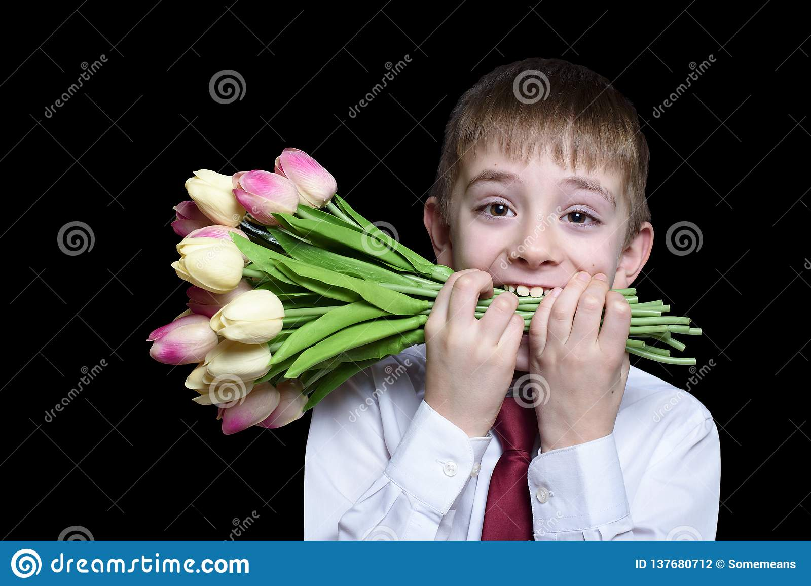 Boy in shirt and tie holding a bouquet of tulips in the teeth. Isolate on black background