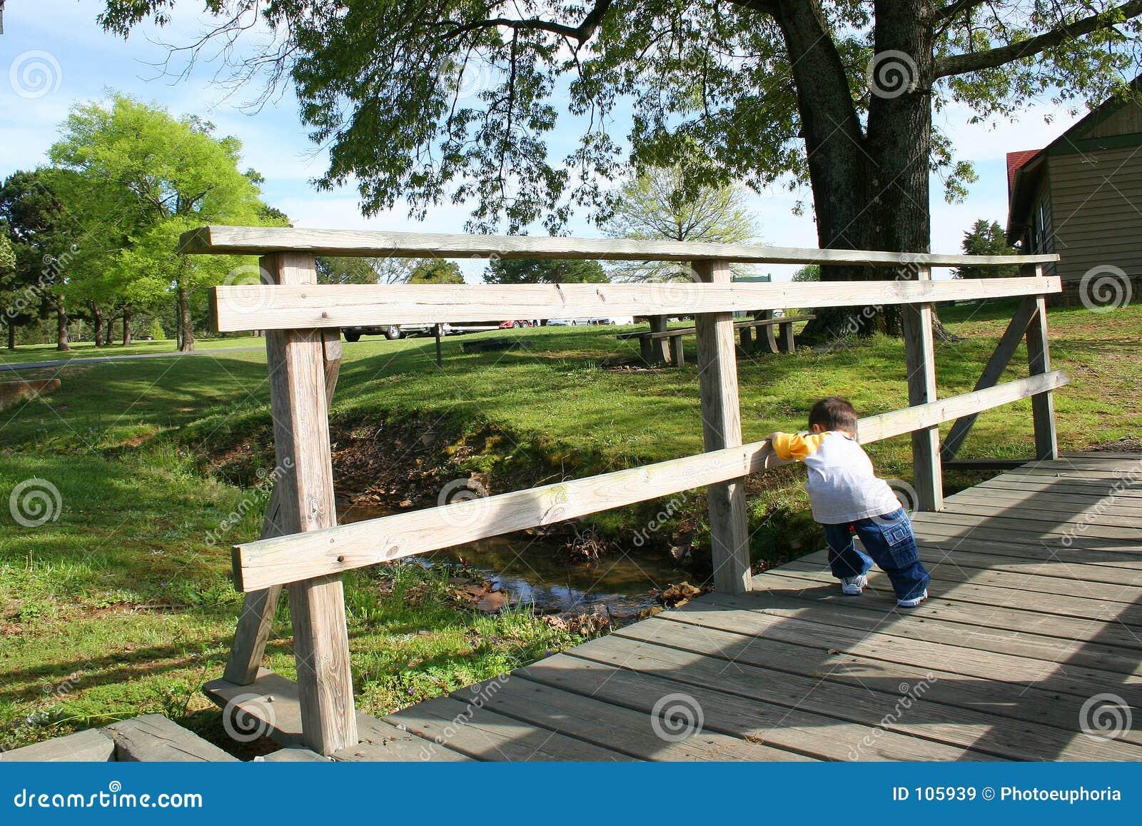 Boy On A Small Wooden Bridge