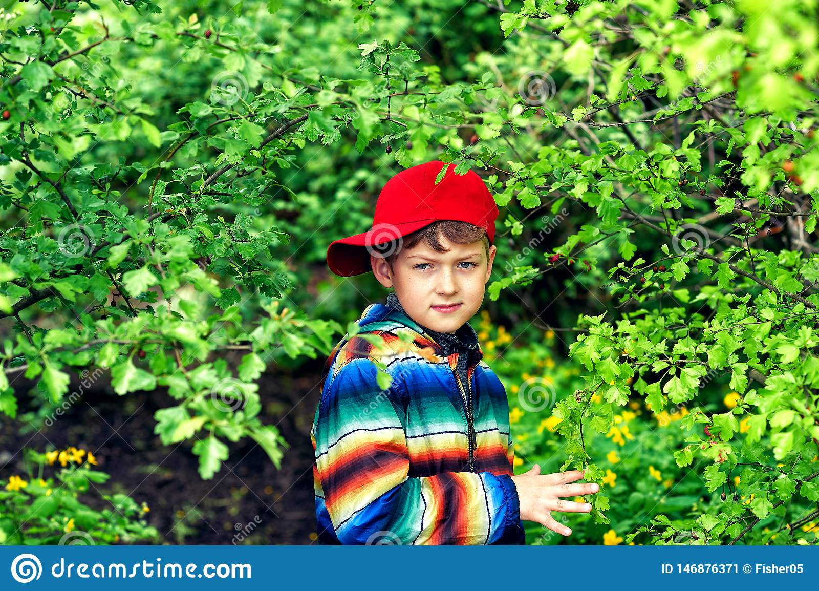 A boy in a spring garden with blooming lilacs .