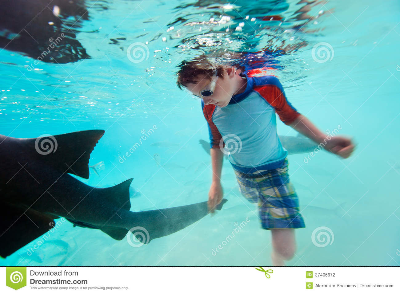 Boy swimming underwater images for Dream of fish swimming