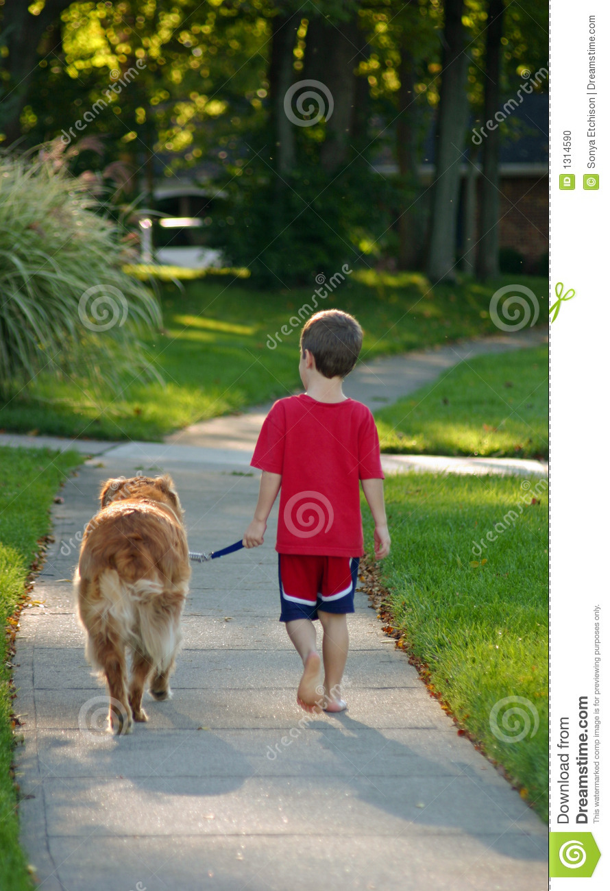 Playful Dogs: Boy Walking Dog Stock Photo