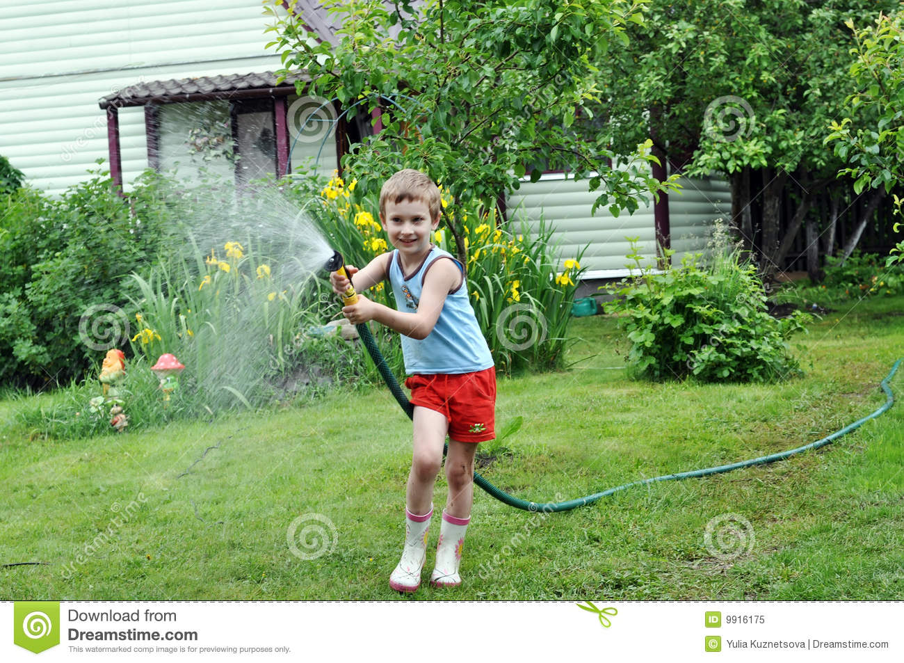 Boy Watering Lawn With Hose Stock Image Image Of Lawn