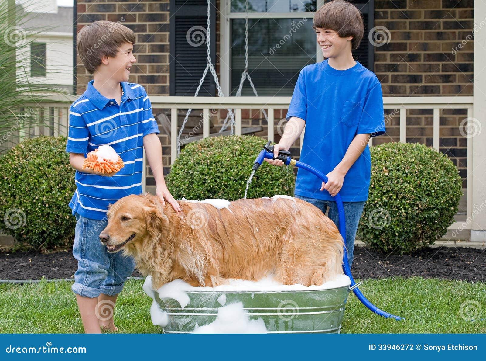 Boys Giving Dog A Bath Stock Photo Image Of Childhood