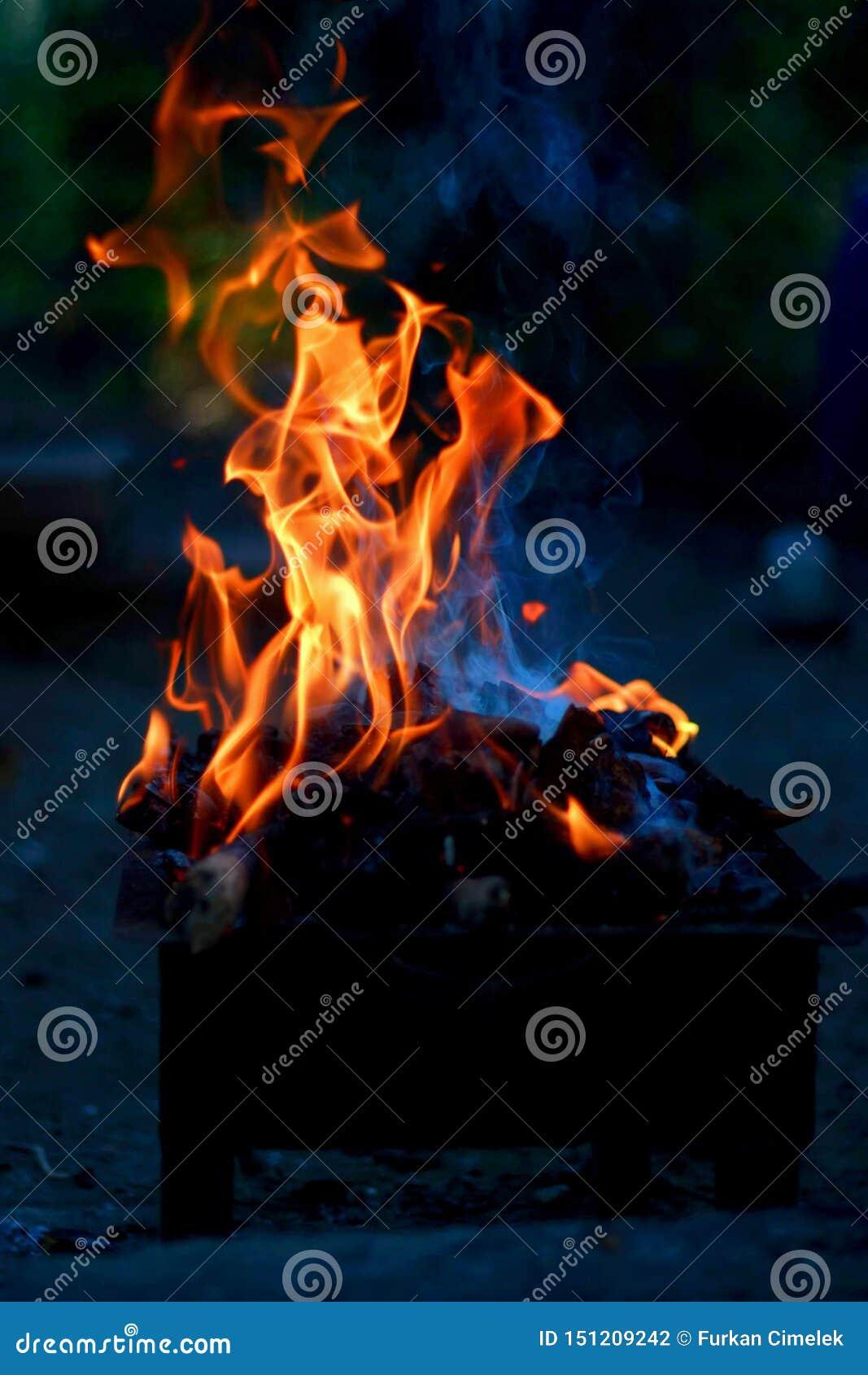 Brännande trä och brand på grillfest