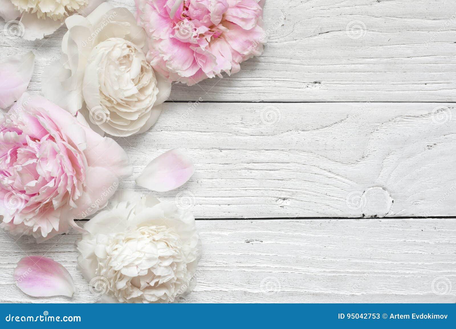 Bröllopinbjudan- eller årsdaghälsningkortet eller modellen för kortet för dagen för moder` s dekorerade med rosa och krämiga pion