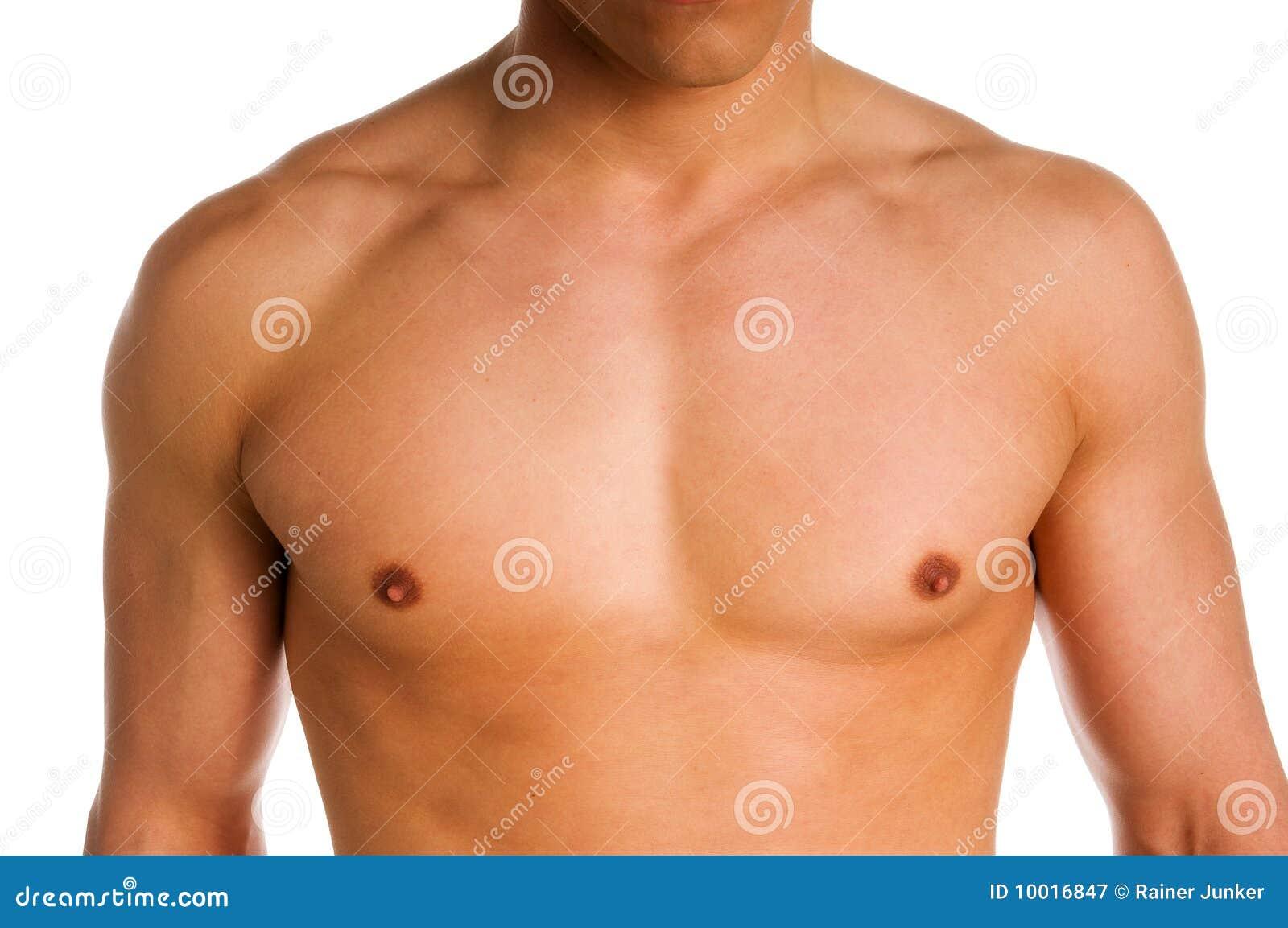 Bröstkorg