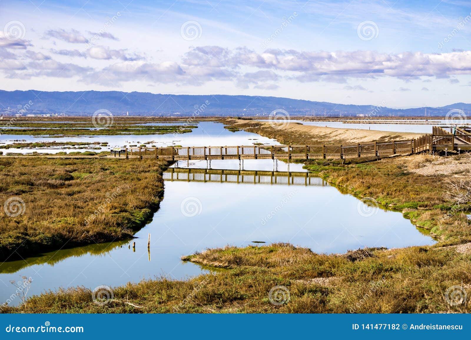 Brücke in Alviso-Sumpf, Don Edwards-Schutzgebiet, Süden San Francisco Bay, San Jose, Kalifornien