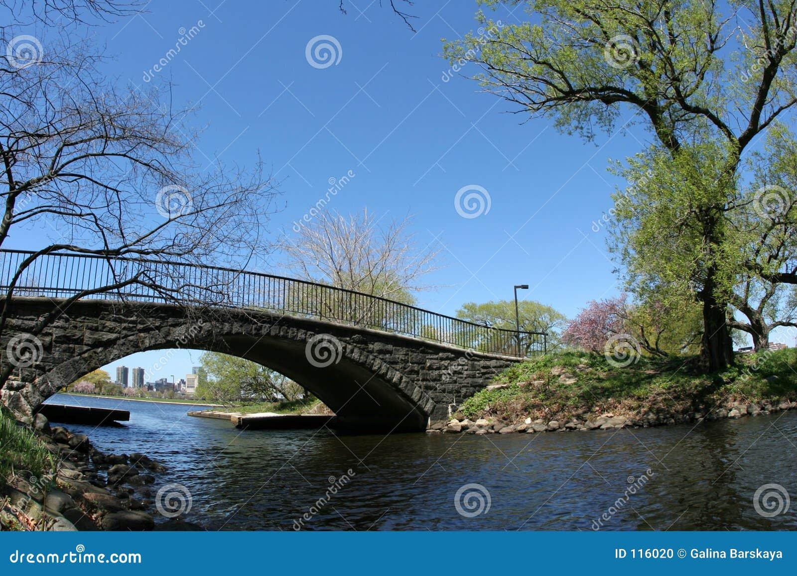 Brücke in einem Park