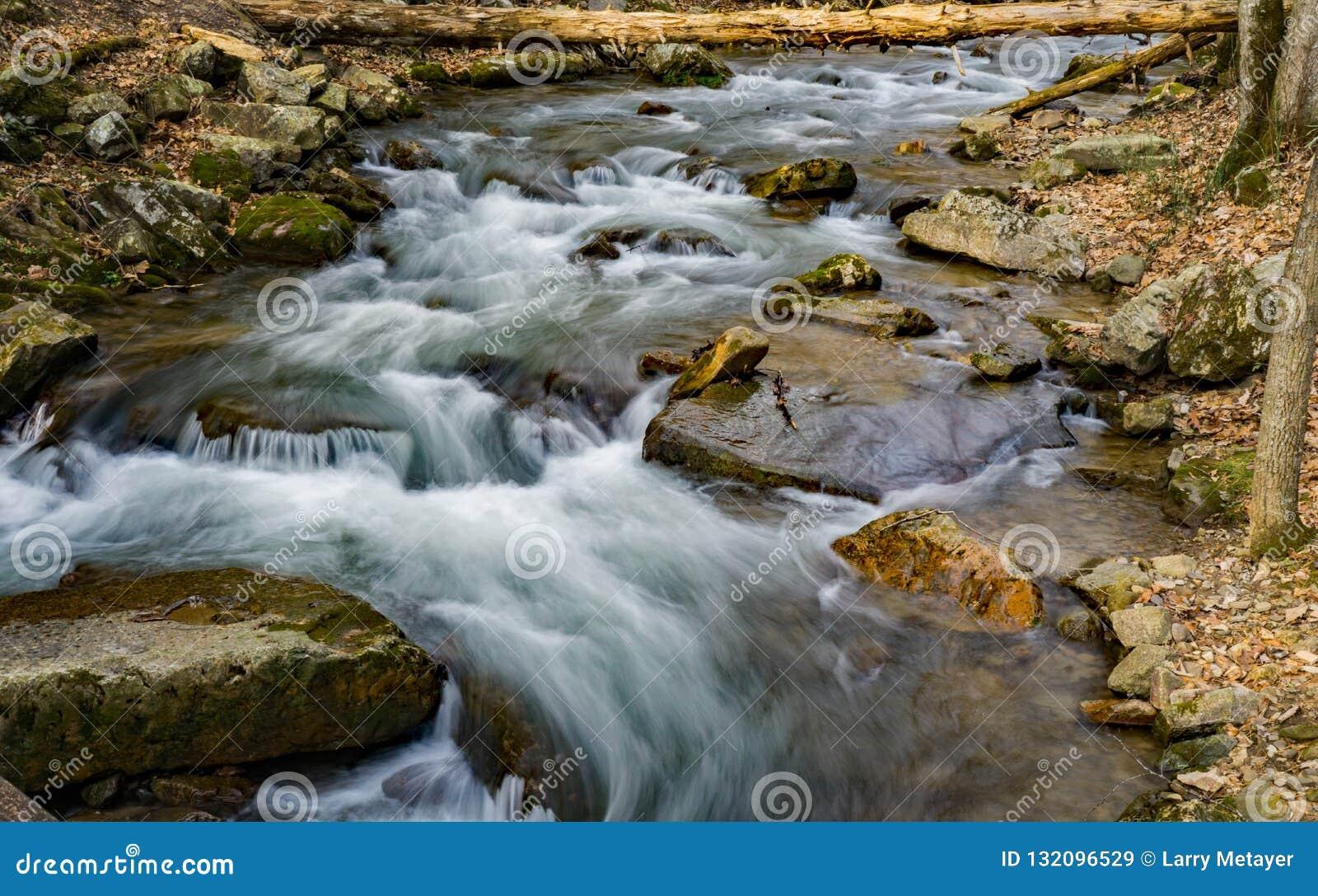 Brüllen Laufnebenfluß in blauen Ridge Mountains