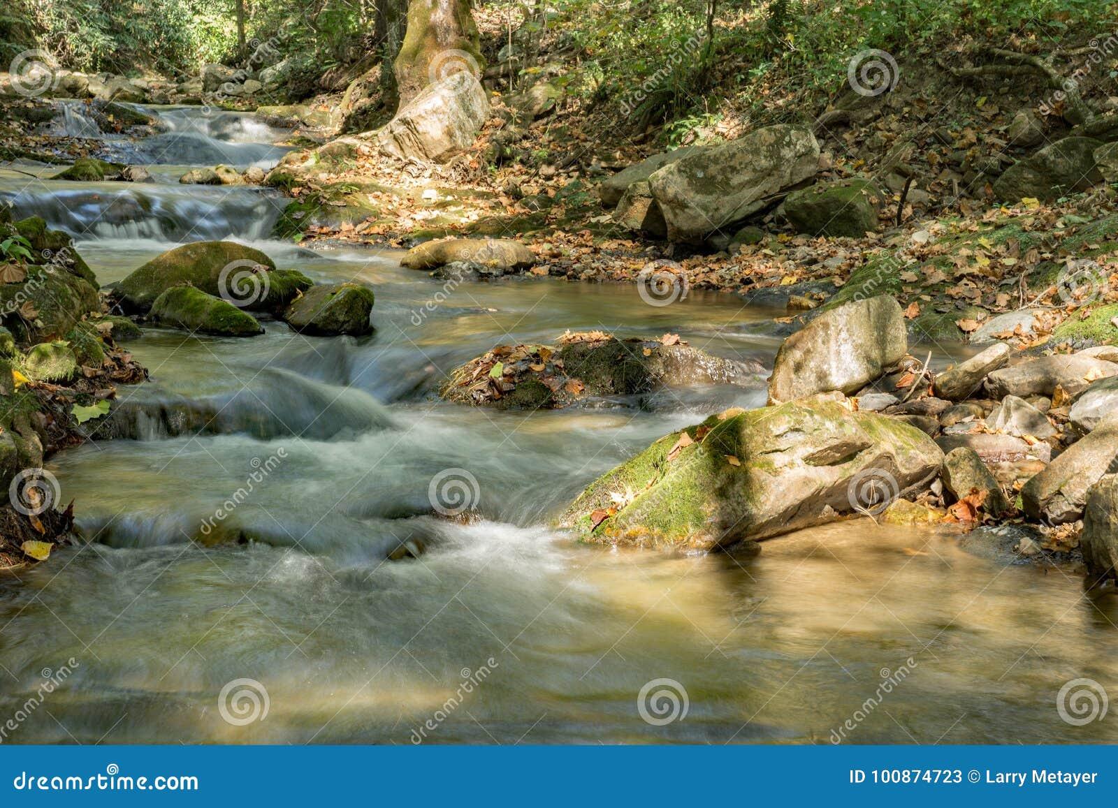 Brüllen Laufnebenfluß, Jefferson National Forest, USA