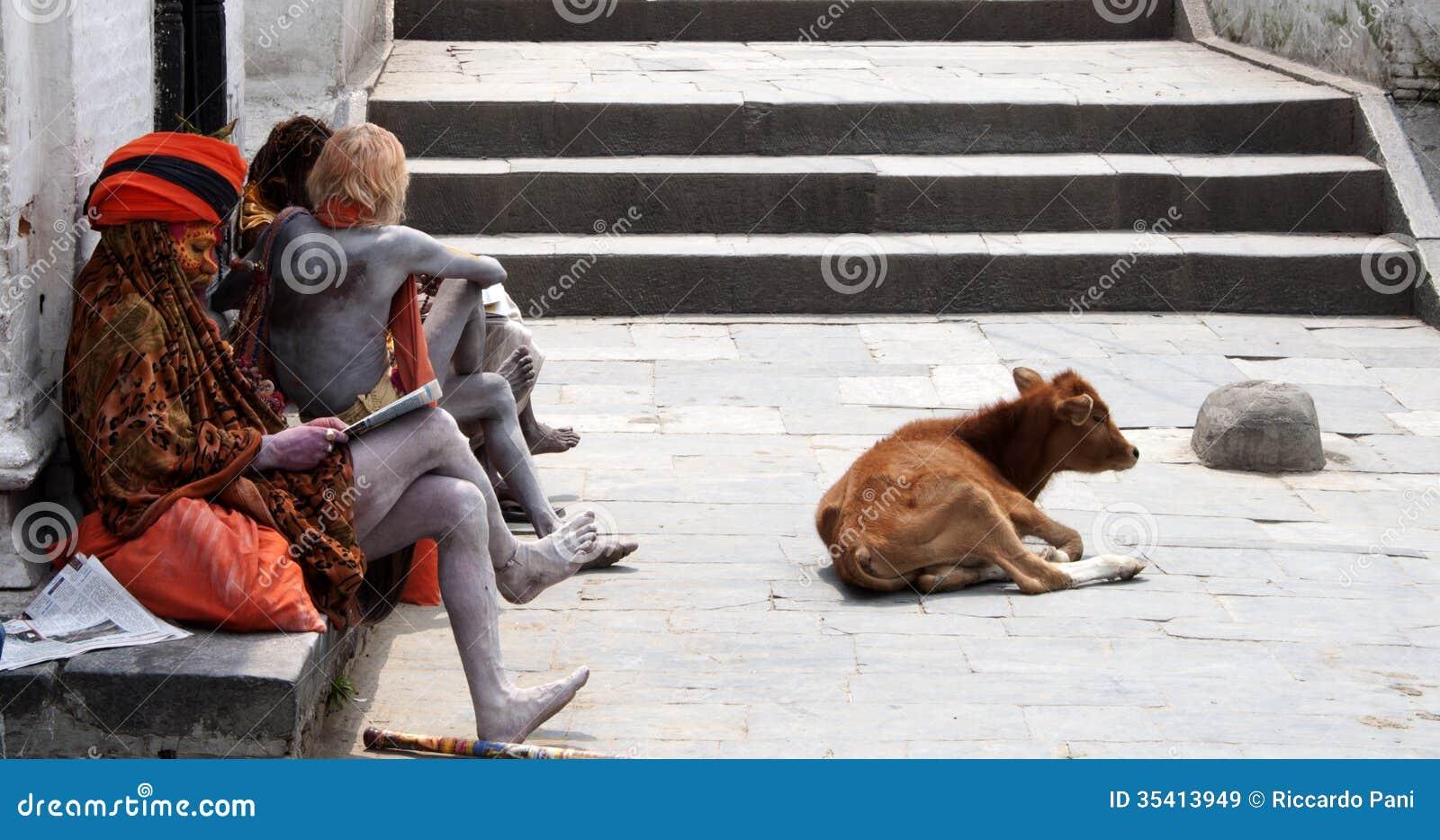 Brahman- Priester