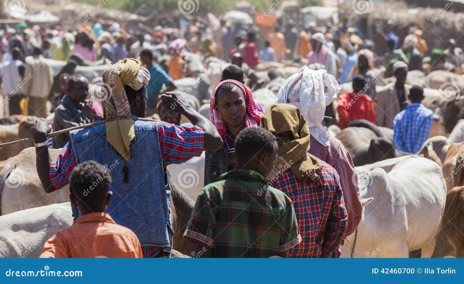 Brahman- Stier, Zebu und anderes Vieh bei einem des größten Viehbestandmarktes im Horn von Afrika-Ländern Babile Äthiopien