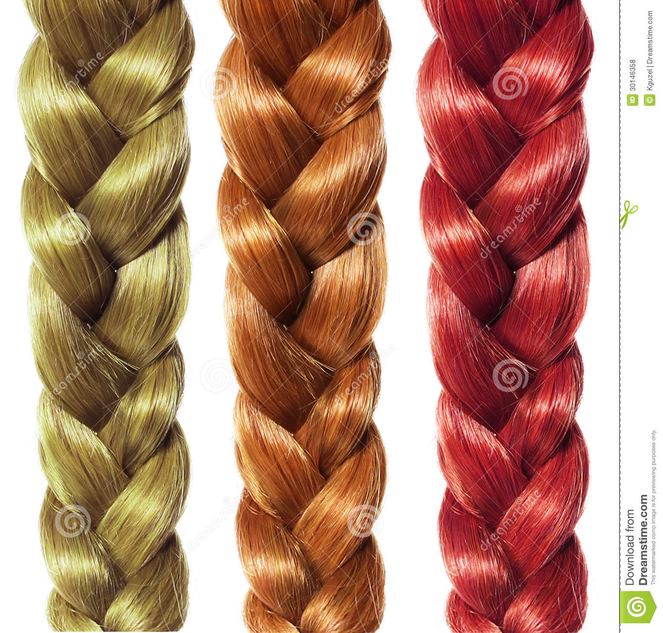 Braid Hair Three Colored Plaits Isolated Hair Care