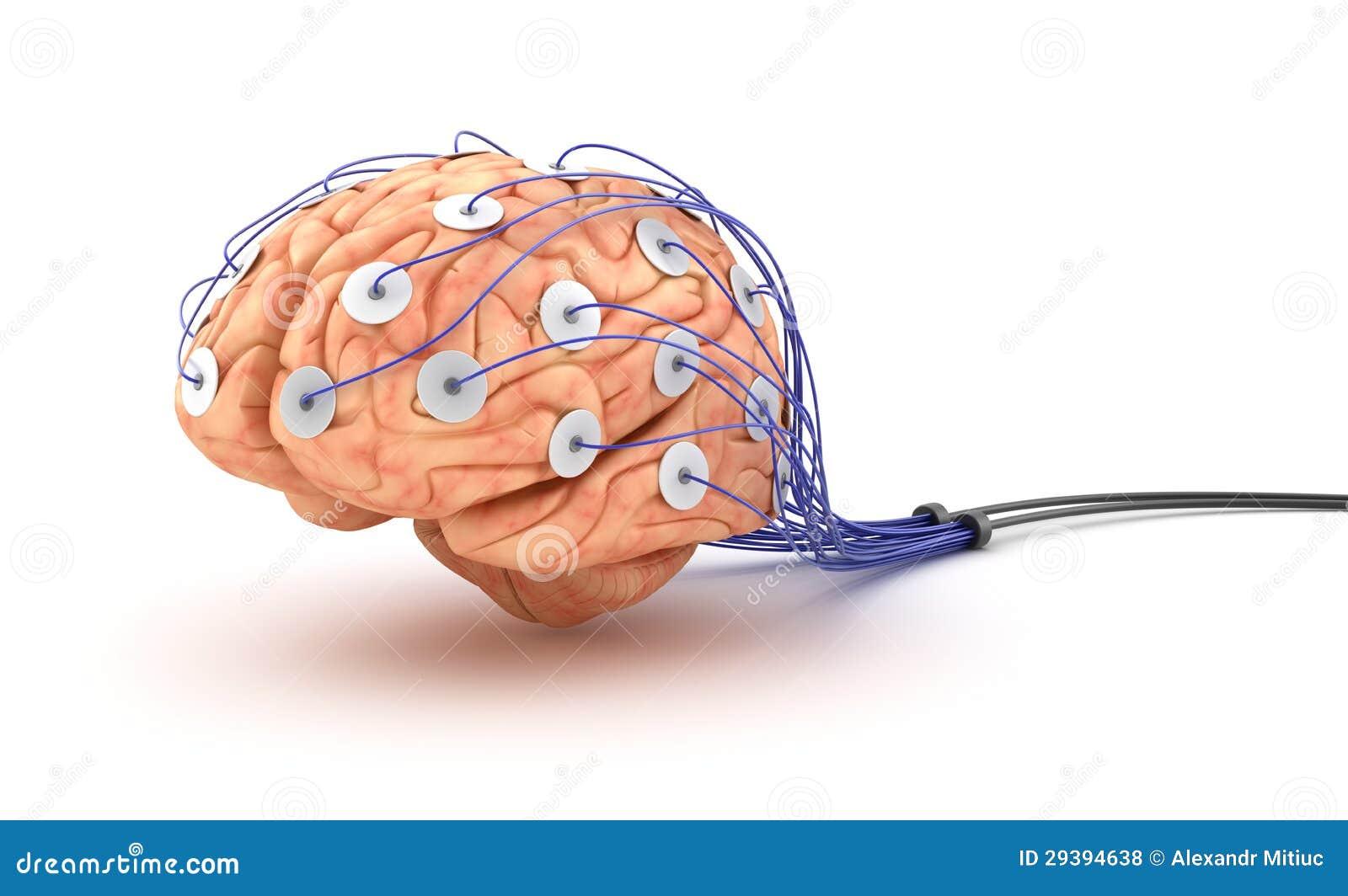 Brain Analysis. Polygraph Test. Stock Illustration - Illustration of ...