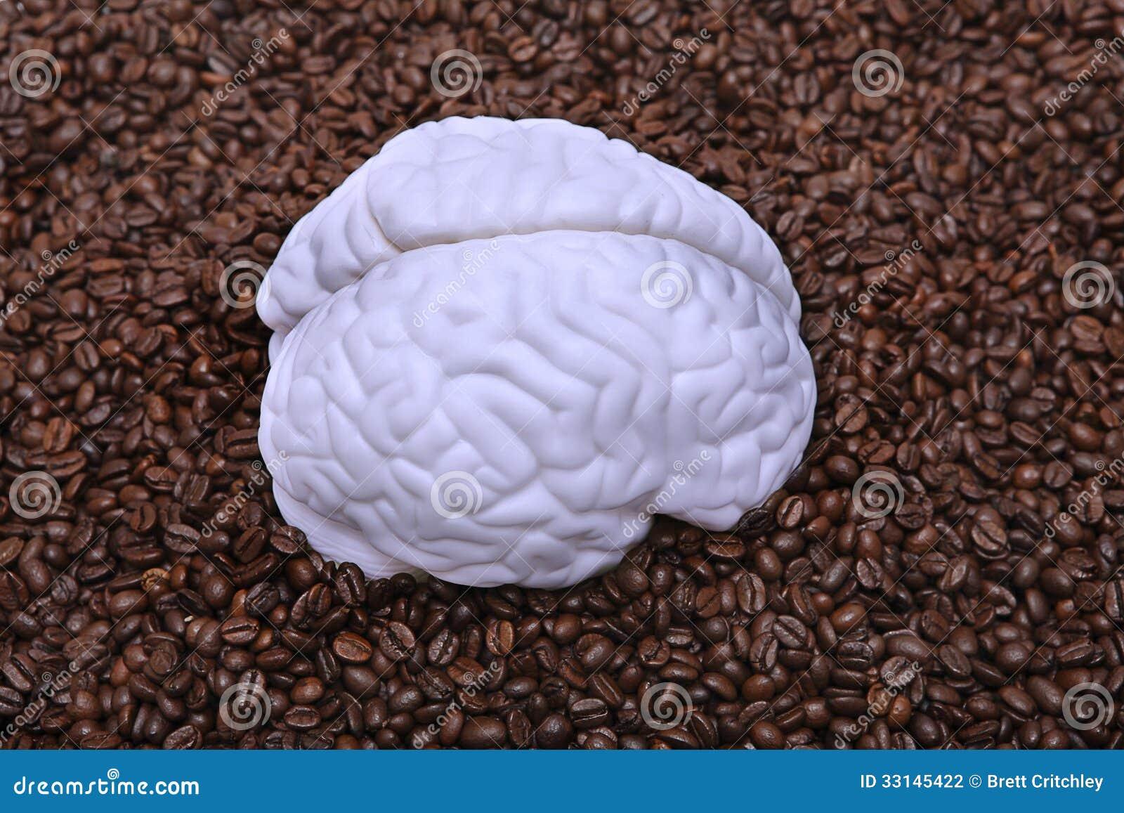 Brain on coffee beans