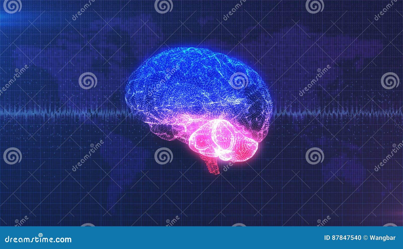 Brain computer image - digital pink, purple and blue brain with brainwave animation
