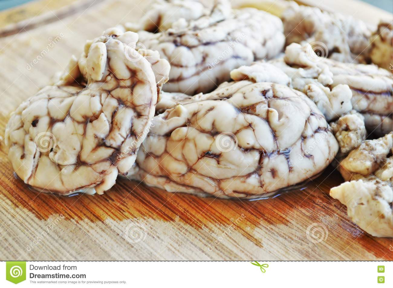 Brains Stock Image Image Of Board Intelligence Cook 71637365